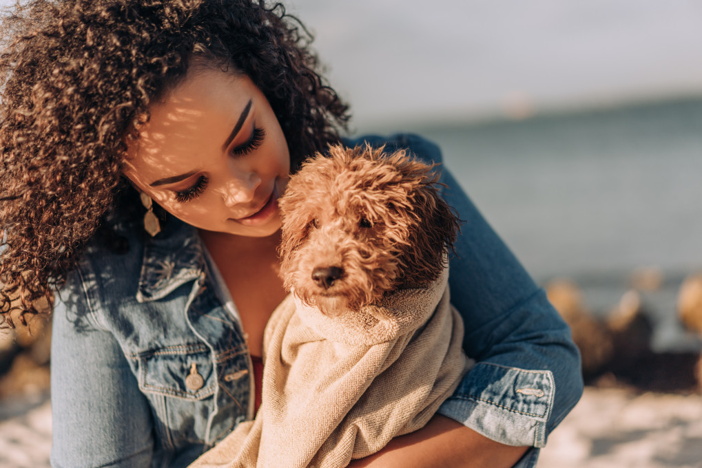 Woman holding a poodle mix puppy on beach